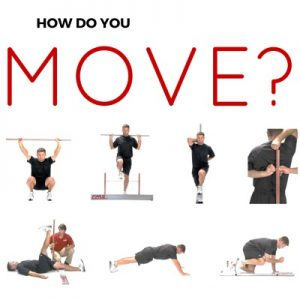 my fitness for life program offers you a personalized fitness program based on the principles of functional movement and active aging